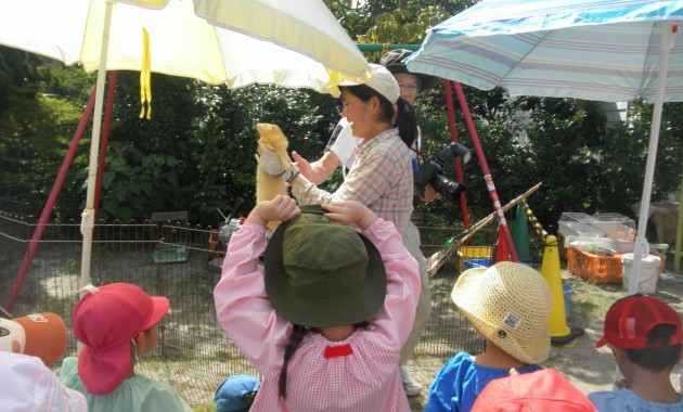 第1幼稚園「ふれあい動物園」のようす